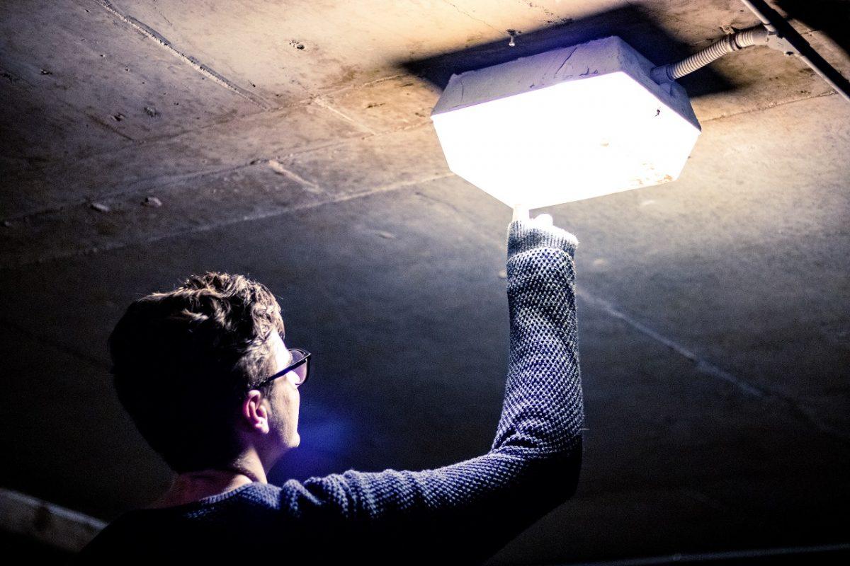 iluminação-manutenção-serviços-pavao-curioso